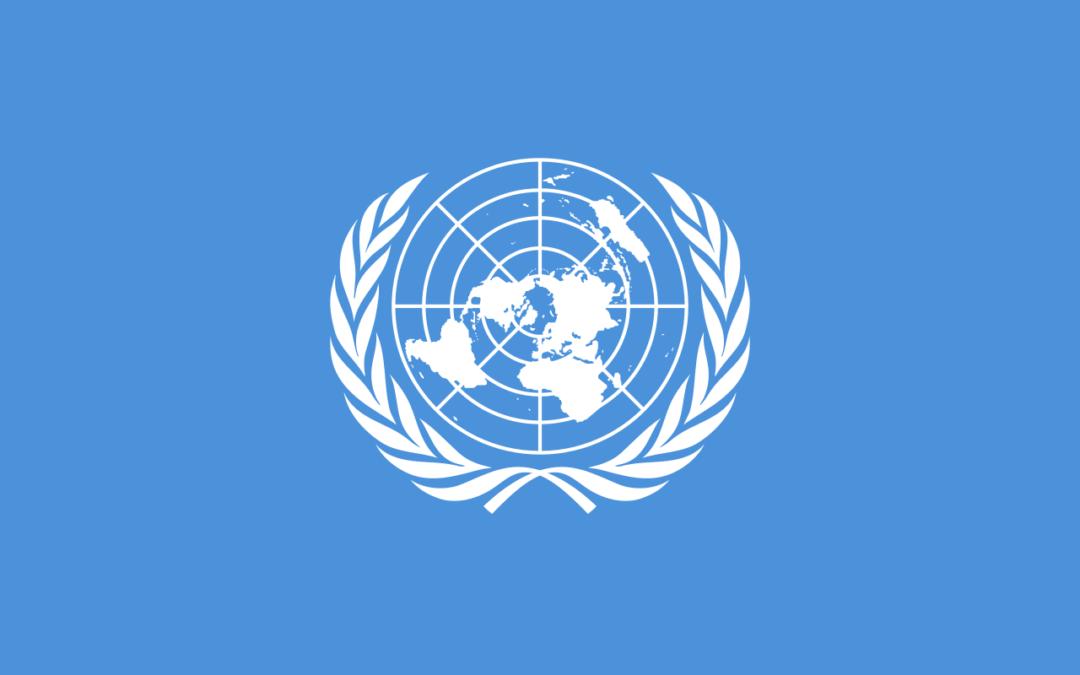 Marítimos – Trabalhadores Essenciais – Resolução da ONU adotada na 75ª sessão da Assembleia